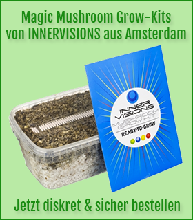 Magic Mushroom Grow-Kits günstig bestellen